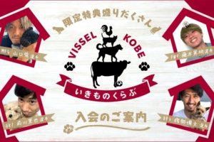 ヴィッセル神戸 ペット限定ファンクラブ「いきものくらぶ」